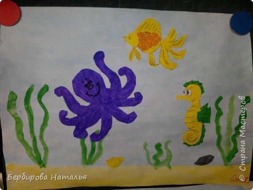Морские обитатели фото 2