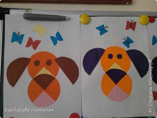 Пёсик и бабочки фото 2