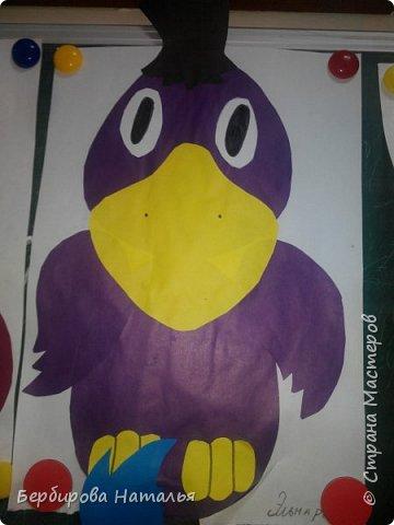 Ворона фото 5