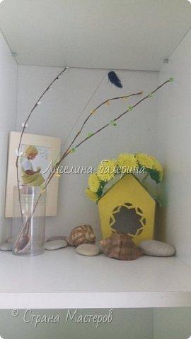 Орхидеи. фото 5