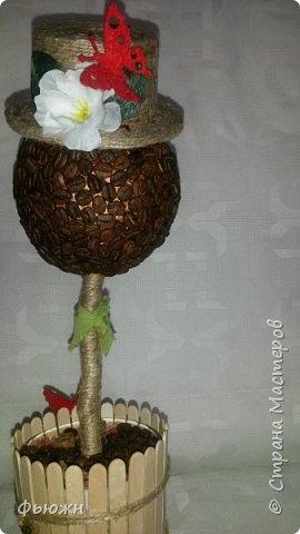 Предлагаю Вашему вниманию кофейное деревце с секретом, скажем, с маленьким тайником для маленького подарка. Или можно назвать по другому - упаковка для подарка)  Вот так выглядит  фото 2