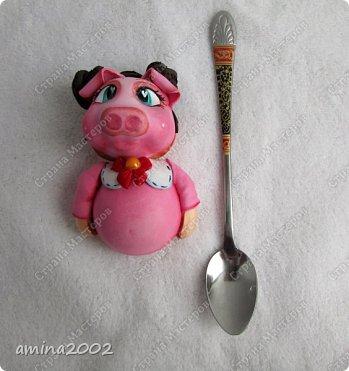 """Добрый день! Тяга к сладкому, как известно, погубила ни одну диету. Шуточная насадка на ложку из фома """"Съесть печенье или нет""""? фото 2"""