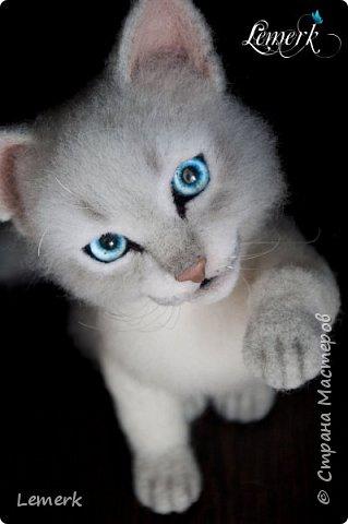 Аквамарин. Валяный невский-маскарадный котенок фото 2