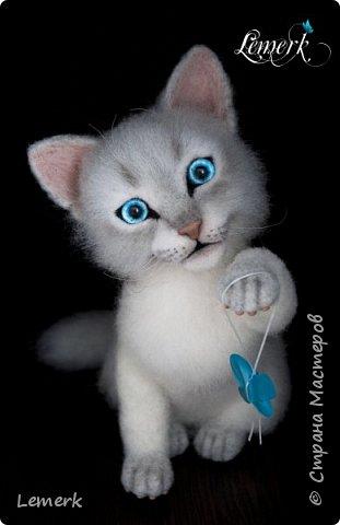 Аквамарин. Валяный невский-маскарадный котенок фото 4
