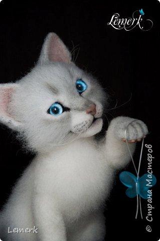Аквамарин. Валяный невский-маскарадный котенок фото 5