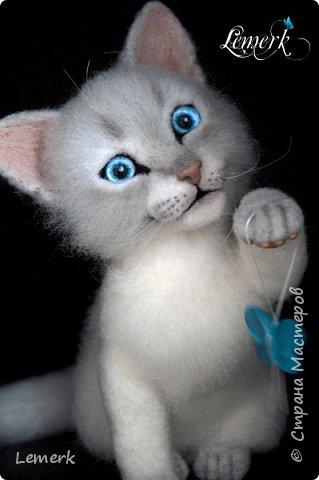 Аквамарин. Валяный невский-маскарадный котенок фото 6