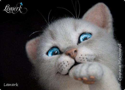 Аквамарин. Валяный невский-маскарадный котенок фото 8