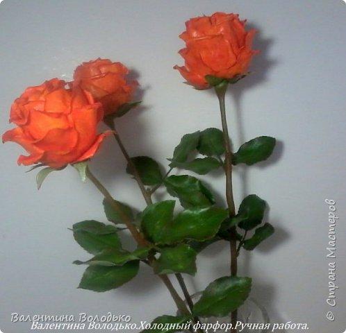 Добрый день мастера и мастерицы!!!!Писать нечего,это снова розы. фото 2