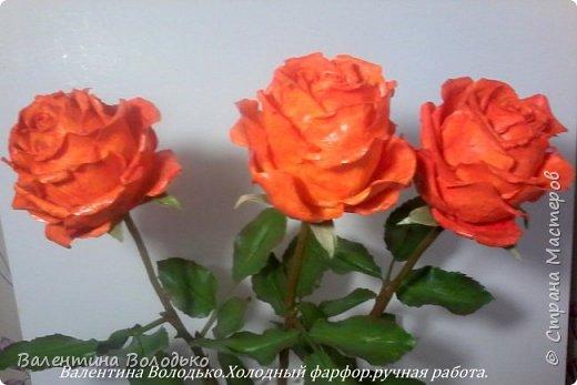 Добрый день мастера и мастерицы!!!!Писать нечего,это снова розы. фото 1