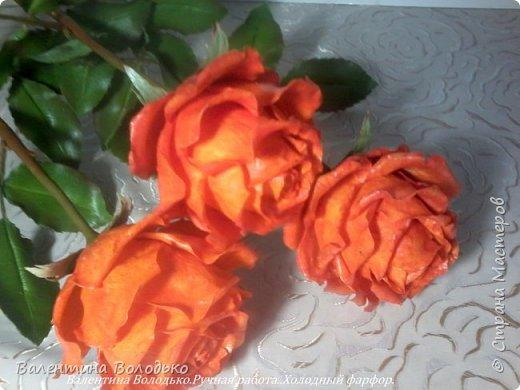 Добрый день мастера и мастерицы!!!!Писать нечего,это снова розы. фото 4