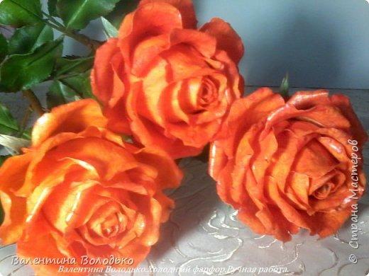 Добрый день мастера и мастерицы!!!!Писать нечего,это снова розы. фото 5