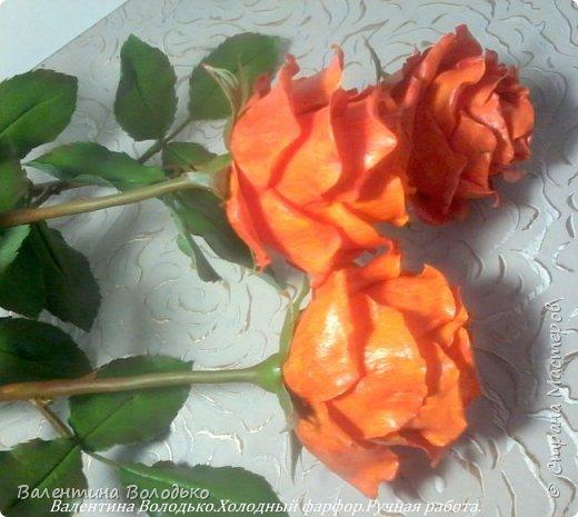 Добрый день мастера и мастерицы!!!!Писать нечего,это снова розы. фото 6