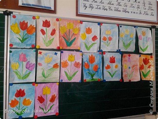 Тюльпаны Шренки(крымские тюльпаны) фото 1