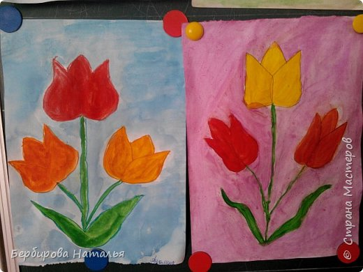 Тюльпаны Шренки(крымские тюльпаны) фото 4