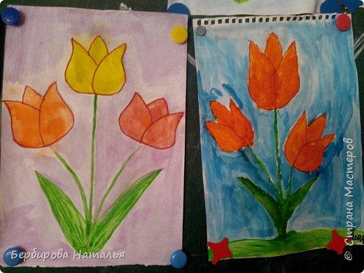 Тюльпаны Шренки(крымские тюльпаны) фото 5