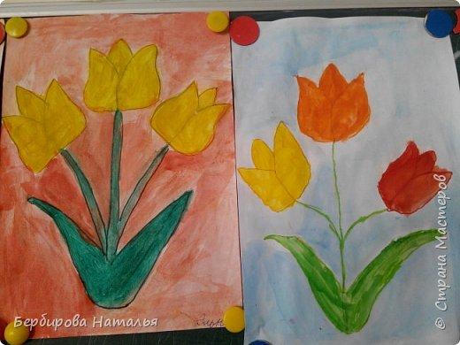 Тюльпаны Шренки(крымские тюльпаны) фото 6