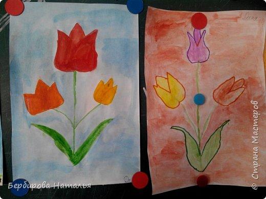 Тюльпаны Шренки(крымские тюльпаны) фото 7