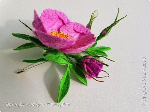 Веточка розового шиповника.  фото 6