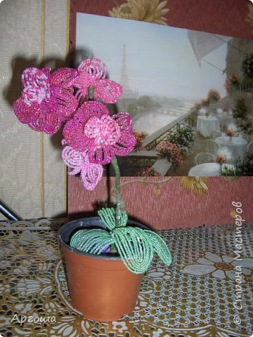 Орхидея из бисера. Первый опыт. фото 1