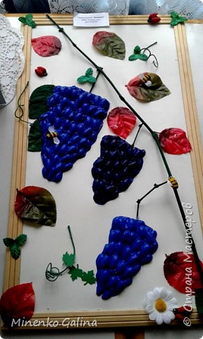 В нашем городе сейчас проходит эковыставка Но вначале ребята начальных классов провели свою выставку работ в школе. Здесь представлена часть работ, т.к. я спохватилась фотографировать, когда часть работ уже была упакована для поездки на городскую выставку. Виноградные гроздья из фисташек. фото 1