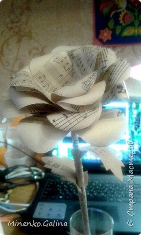 Всем доброго времени суток.Сегодня хочу показать, какие цветы из старых журналов делали мы с детьми на экоконкурс в дополнении к вазам, сделанными своими руками.Работы уехали на выставку, а я решила и себе домой сделать такие же. фото 13
