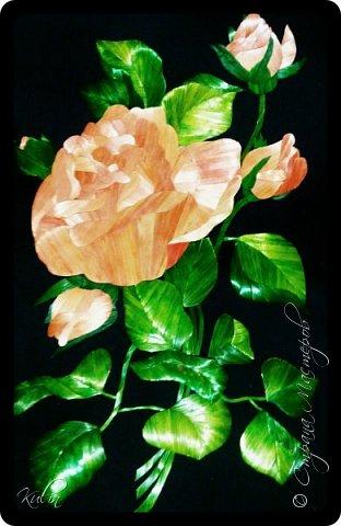 Розы... Розовые розы... Мечты... Грезы... И...Розы! фото 1