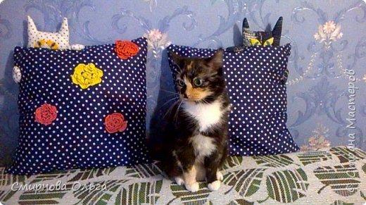 На одном из сайтов давно заприметила интересные подушечки. А если мне что-то нравится , и я знаю, что это можно сделать самой, я это сделаю.  фото 1