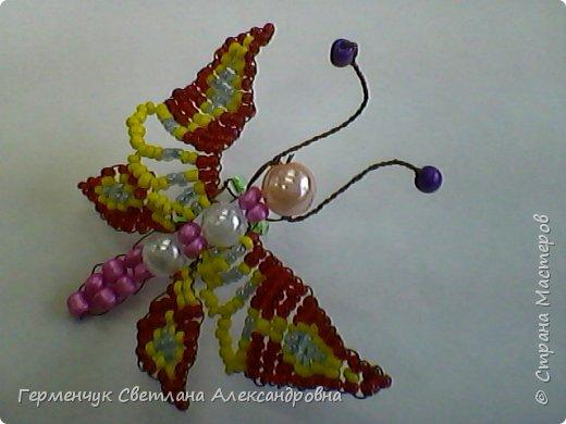 Эту   бабочку- красавицу  из бисера    выполнила  Карина Жулего  . Работа девочки  очень аккуратная,  яркая,  и бабочка получилась как живая !!! Карина ,Браво!!!   фото 3