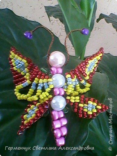 Эту   бабочку- красавицу  из бисера    выполнила  Карина Жулего  . Работа девочки  очень аккуратная,  яркая,  и бабочка получилась как живая !!! Карина ,Браво!!!   фото 1