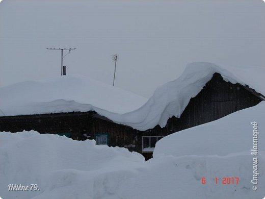 """"""" На чисто-белом покрывале снега, рябины красной куст огнём горит...  фото 5"""