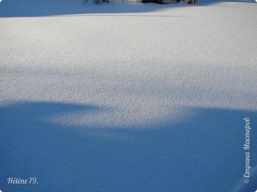 """"""" На чисто-белом покрывале снега, рябины красной куст огнём горит...  фото 15"""