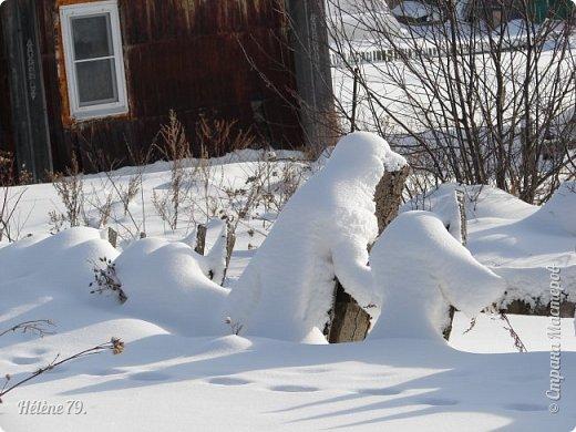 """"""" На чисто-белом покрывале снега, рябины красной куст огнём горит...  фото 20"""
