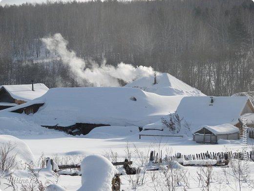""""""" На чисто-белом покрывале снега, рябины красной куст огнём горит...  фото 21"""