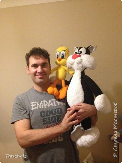 Кот Сильвестр и цыплёнок Твитти фото 6