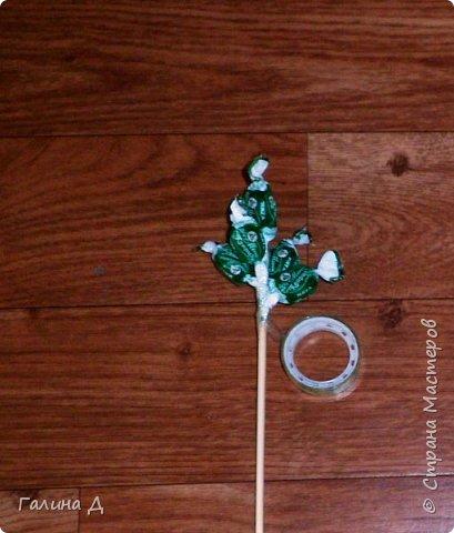 Хорошего всем времени суток! Хочу поделиться своим МК по изготовлению гиацинтов из конфет. Можт даже не совсем похоже. Можно сделать совместно с ребёнком подарок на день рождения бабушке, тёте, сестре и т.д. На 8 Марта (которое уже позади, но ещё будет). Да и просто подарок, когда идёте в гости. и приятно, и вкусно. фото 6