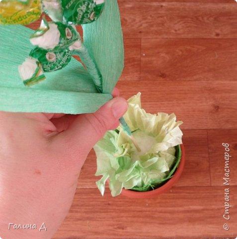 Хорошего всем времени суток! Хочу поделиться своим МК по изготовлению гиацинтов из конфет. Можт даже не совсем похоже. Можно сделать совместно с ребёнком подарок на день рождения бабушке, тёте, сестре и т.д. На 8 Марта (которое уже позади, но ещё будет). Да и просто подарок, когда идёте в гости. и приятно, и вкусно. фото 16