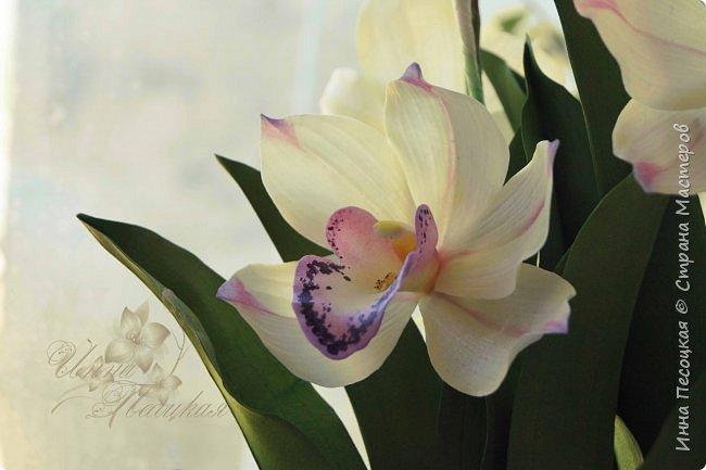 """Совсем недавно """"вырастила"""" вот такую орхидейку, орхидею Цимбидиум.  Сначала сделала цветочки, затем бутончики, листики,  собрала в кустики  и """"высадила"""" в кашпо. Высота с кашпо получилась немаленькая, около 65 см.  фото 1"""