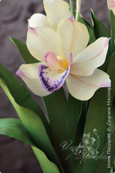 """Совсем недавно """"вырастила"""" вот такую орхидейку, орхидею Цимбидиум.  Сначала сделала цветочки, затем бутончики, листики,  собрала в кустики  и """"высадила"""" в кашпо. Высота с кашпо получилась немаленькая, около 65 см.  фото 4"""