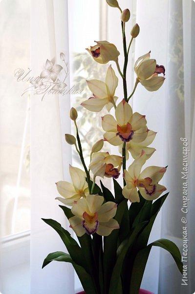 """Совсем недавно """"вырастила"""" вот такую орхидейку, орхидею Цимбидиум.  Сначала сделала цветочки, затем бутончики, листики,  собрала в кустики  и """"высадила"""" в кашпо. Высота с кашпо получилась немаленькая, около 65 см.  фото 3"""