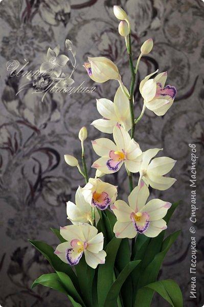 """Совсем недавно """"вырастила"""" вот такую орхидейку, орхидею Цимбидиум.  Сначала сделала цветочки, затем бутончики, листики,  собрала в кустики  и """"высадила"""" в кашпо. Высота с кашпо получилась немаленькая, около 65 см.  фото 5"""
