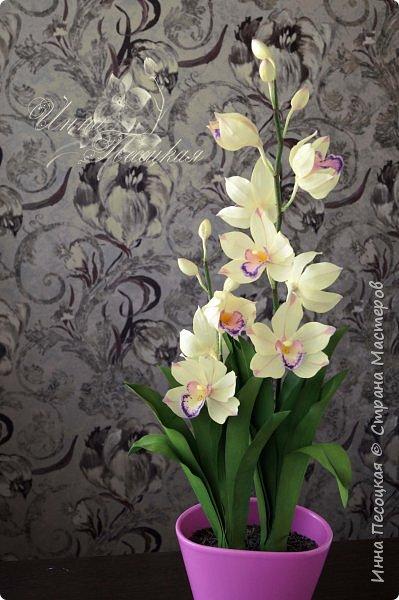 """Совсем недавно """"вырастила"""" вот такую орхидейку, орхидею Цимбидиум.  Сначала сделала цветочки, затем бутончики, листики,  собрала в кустики  и """"высадила"""" в кашпо. Высота с кашпо получилась немаленькая, около 65 см.  фото 2"""