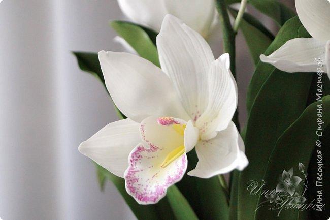 """Совсем недавно """"вырастила"""" вот такую орхидейку, орхидею Цимбидиум.  Сначала сделала цветочки, затем бутончики, листики,  собрала в кустики  и """"высадила"""" в кашпо. Высота с кашпо получилась немаленькая, около 65 см.  фото 7"""