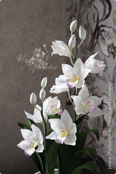 """Совсем недавно """"вырастила"""" вот такую орхидейку, орхидею Цимбидиум.  Сначала сделала цветочки, затем бутончики, листики,  собрала в кустики  и """"высадила"""" в кашпо. Высота с кашпо получилась немаленькая, около 65 см.  фото 6"""