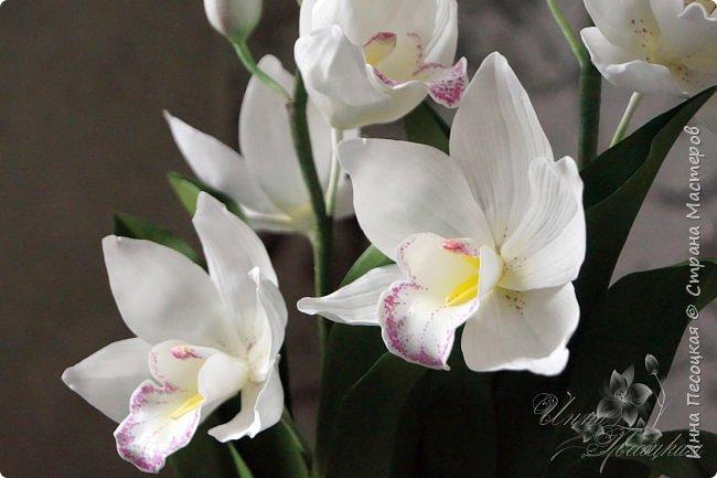 """Совсем недавно """"вырастила"""" вот такую орхидейку, орхидею Цимбидиум.  Сначала сделала цветочки, затем бутончики, листики,  собрала в кустики  и """"высадила"""" в кашпо. Высота с кашпо получилась немаленькая, около 65 см.  фото 8"""