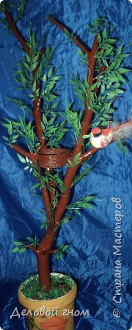Деревья семейного плодородия фото 3