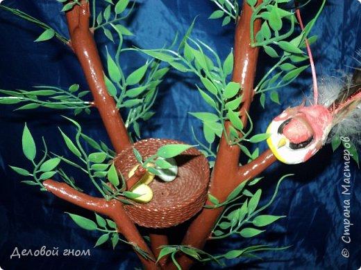 Деревья семейного плодородия фото 4