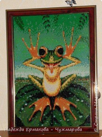 Алмазная мозаика 2 фото 6