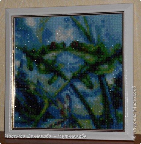 Алмазная мозаика 2 фото 7