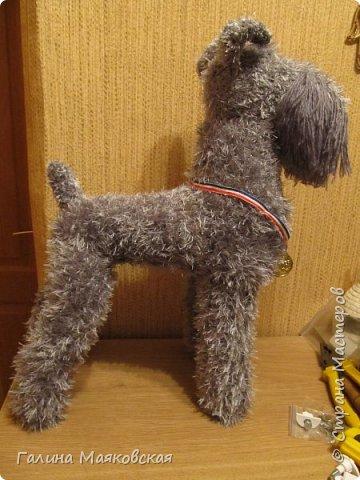 """Привет всем! В нашем доме очередная собака - эксперименты к 2018 году продолжаются.  Сегодня - керри блю терьер. Во всяком случае,  я старалась, чтобы получился именно он, потому что таких я еще не делала. Собака ростом 50 см - в натуральную величину, проволочный каркас,  набивка - синтепон, пряжа """"травка"""" и акрил. А то получилось, судить вам! фото 2"""