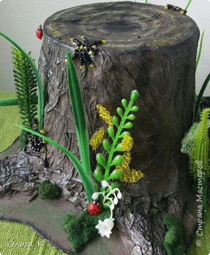 Всем доброго времени суток!Решила показать вам какой чудо пень у нас получился,делали его вместе с дочкой в школу на конкурс -мир глазами детей!Делали по МК мастерицы из СМ,долго думали,что можно было придумать на эту тему,решили соединить природу и насекомых. фото 6